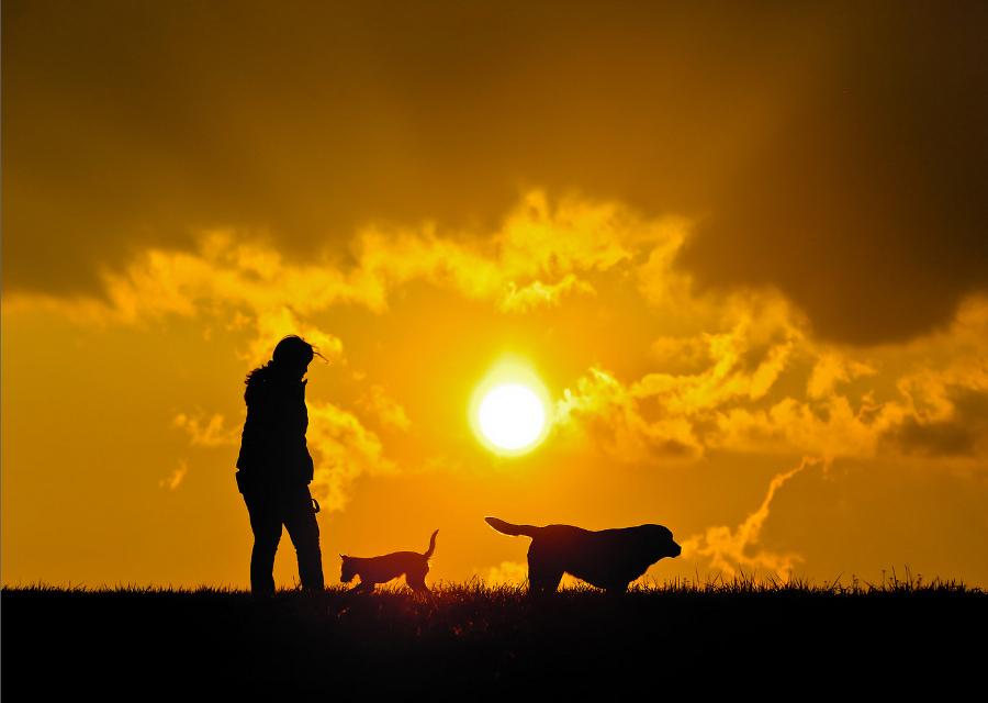 copertina_cieli_nuvole_tramonto