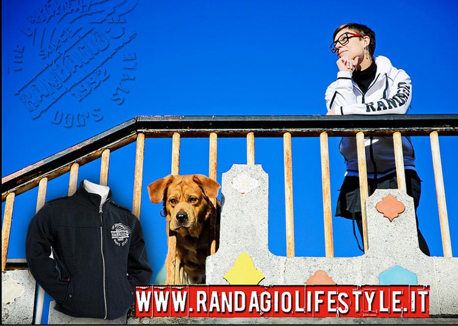 copertina_randagio