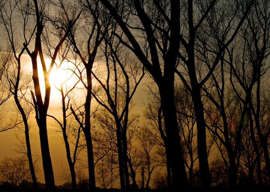 copertina_sunset