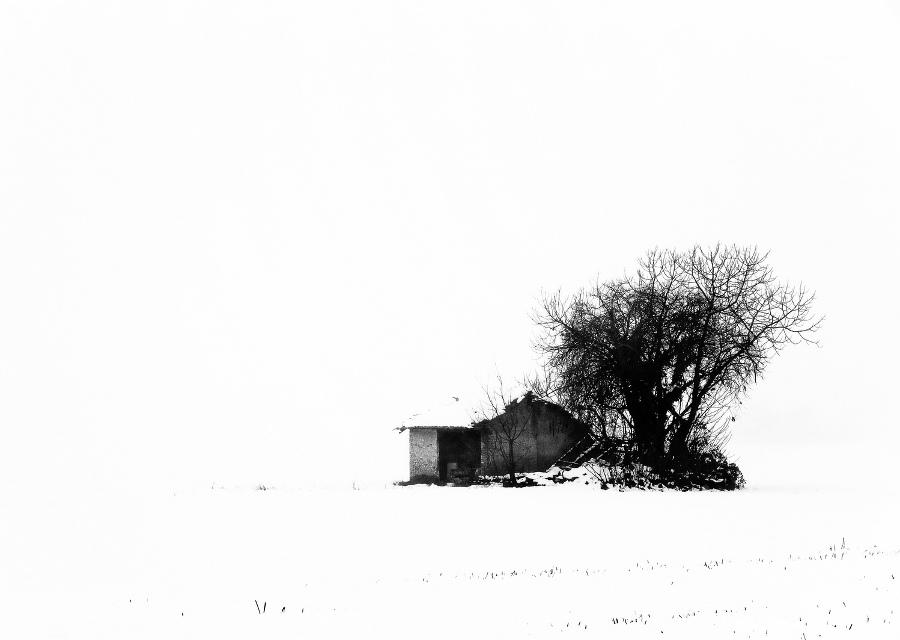 copertina_winter