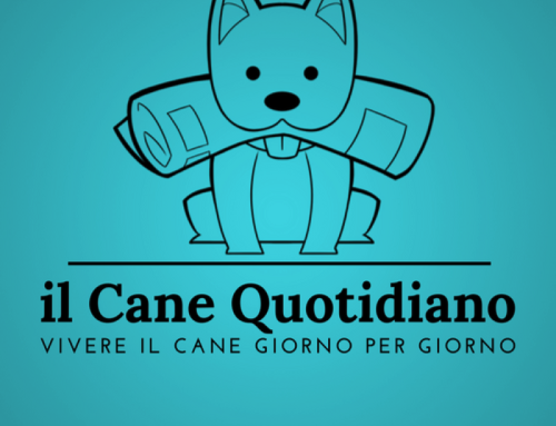 Un nuovo quotidiano on-line sul mondo del cane