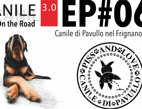 CANILE 3.0 On the Road EP#06